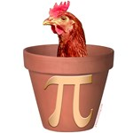 Chicken Pot Pi