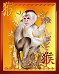 Year Of The Monkey-2016