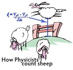 How do Physicists Count Sheep?  With equations!  This great physics humor gift design with how a physicist counts sheep is sure to get a laugh at any college or office.