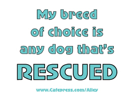 MY BREED OF CHOICE IS ANY DOG THAT'S RESCUED