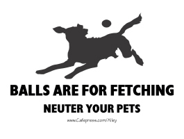 BALLS ARE FOR FETCHING (NEUTER YOUR PETS)
