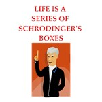 a funny schroedinger's cat joke on gifts and t-shi
