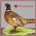 We Love Pheasants!
