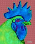 Blue/Lime Rooster