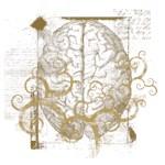 Brainy Graphic Art T Shirt