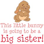 Bunny Big Sister Gifts