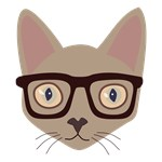 Cat With Eyeglasses