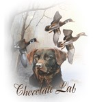 Chocolate Lab Goes Hunting