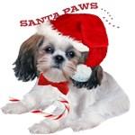 Shih Tzu Santa Paws Play