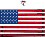 Trout Fly Fishing American Flag