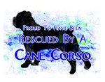 Rescued by a Cane Corso