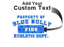 Personalized Blue Bully