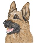 German Shepherd Gifts