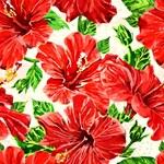 Red Hibiscus Tropical Floral