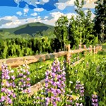 Floral Mountain Landscape with Fence
