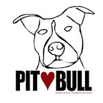 Pit (Love) Bull - Lilly