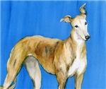 Greyhound Watercolor