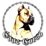 Cane Corso