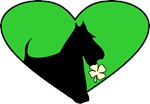 Scottie Shamrock