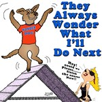 Wonder Dog Agility