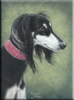 Saluki (Black and Silver)