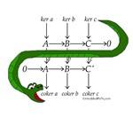 The Snake Lemma