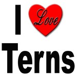 I Love Terns