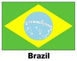 Brazil Brazilian Flag