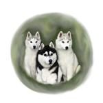 Siberian Trio