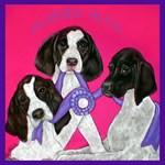 GSP Puppies Rule