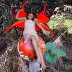 Toadstool & Mushroom Fairies