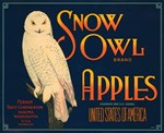 Snow Owl Apples Fruit Crate Label