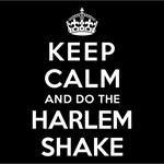 KEEP CALM AND DO THE HARLEM SHAKE