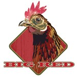 Big Red Country Rooster