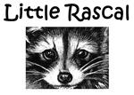 Little Rascal Racoon