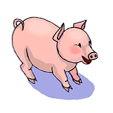 <b>Celebrate Pigs with Porcine Gifts & Gear</b>