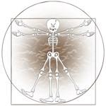 Vitruvian Man Skeleton Cartoon