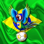 Brazil Macaw with Soccer Ball