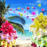 Tropical Beach and Exotic Plumeria Flowers
