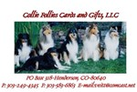 Collie Follies Logo