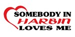 Somebody in Harbin loves me shirts. Great idea on