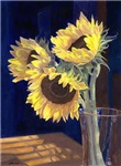 Sunflowers and Light