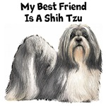 My Best Friend Is A Shih Tzu