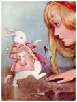 Alice - Tarrant
