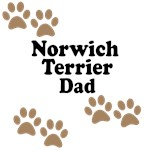 Norwich Terrier Dad