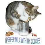 Funny Cat Eating Cookies and Dipping in Milk