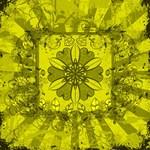 Yellow Star Flower Design