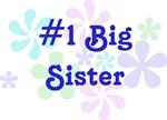 #1 Big Sister