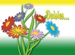 Krazy for Daisies