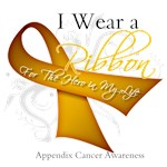 Ribbon Hero Appendix Cancer Shirts and Gifts